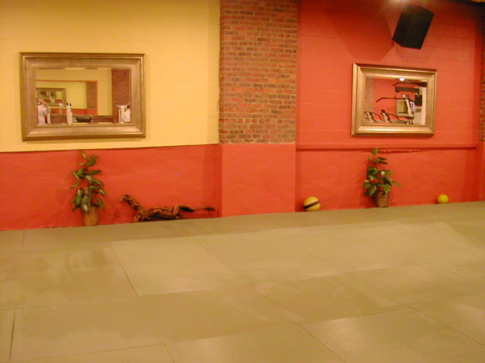 Aiki_3_months_and_Gym_2nd_floor_0104_160 (2)