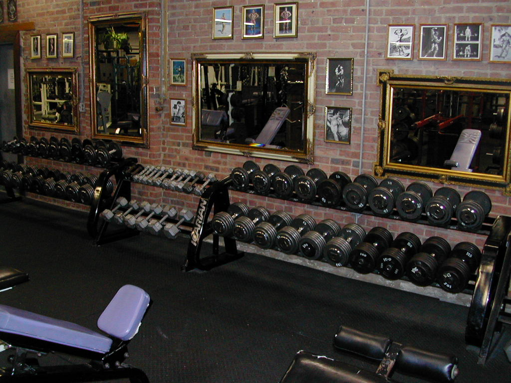 Dumbell_Wall