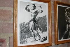 Arnold_Wall_shot