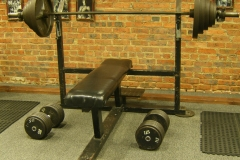 Bench & dumbells (2)